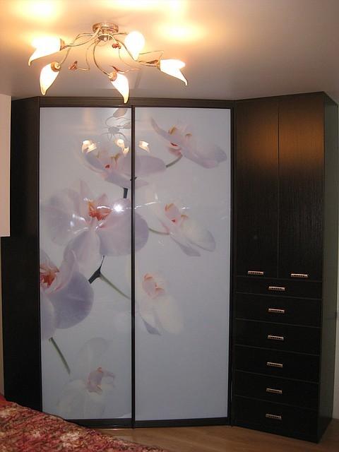 Шкафы купе с орхидеями фото